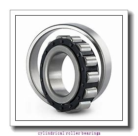 25 mm x 52 mm x 15 mm  SKF NJ 205 ECP  Cylindrical Roller Bearings