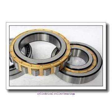 75 mm x 160 mm x 55 mm  SKF NU 2315 ECP  Cylindrical Roller Bearings