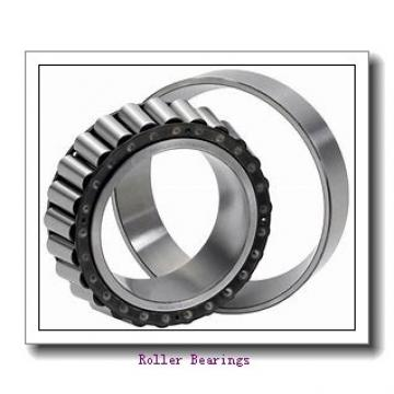 80 mm x 125 mm x 22 mm  FAG N1016-K-M1-SP  Roller Bearings