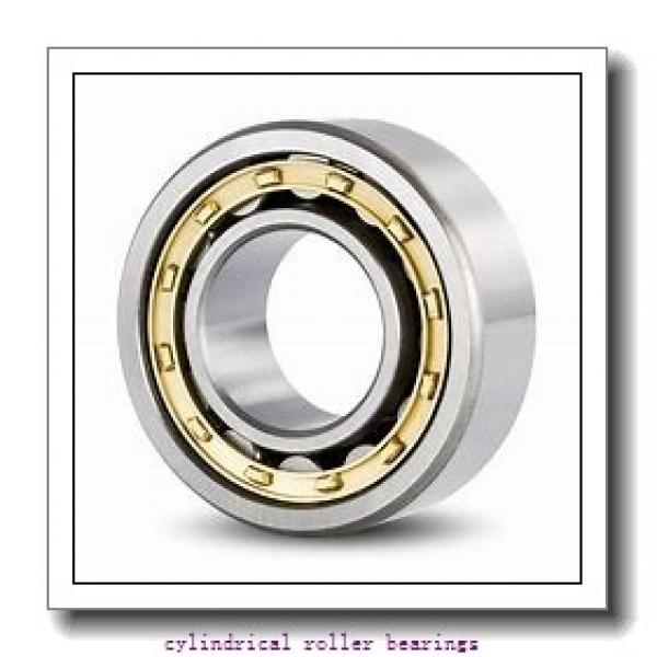 3.74 Inch   95 Millimeter x 5.709 Inch   145 Millimeter x 2.638 Inch   67 Millimeter  IKO NAS5019ZZNR  Cylindrical Roller Bearings #2 image