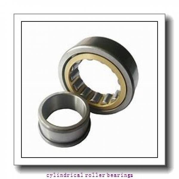 1.969 Inch   50 Millimeter x 3.543 Inch   90 Millimeter x 0.787 Inch   20 Millimeter  SKF NUP 210 ECNJ/C3  Cylindrical Roller Bearings #1 image