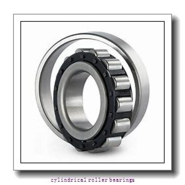 3.74 Inch   95 Millimeter x 5.709 Inch   145 Millimeter x 2.638 Inch   67 Millimeter  IKO NAS5019ZZNR  Cylindrical Roller Bearings #1 image